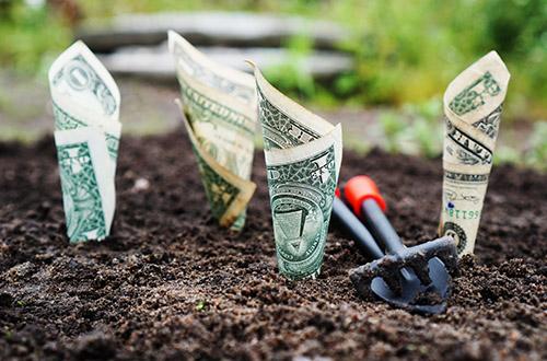 Finance & Natuurlijk Kapitaal