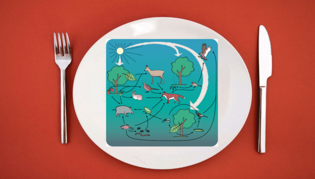 Development of a 'biodiversity on your plate' programme